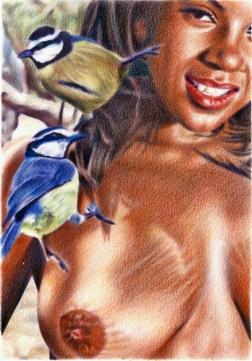 Clément Collet-Billon, African Blue Tits, crayons de couleur et encres imprimantes sur papier, 21x14,7cm, 2017