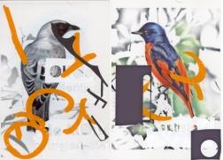 Clément Collet-Billon, Echenilleur de minivet, crayons de couleur et encres imprimantes sur papier, 21x29,7cm, 2013