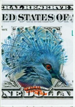 """Clément Collet-Billon Victoria crowned pigeon,""""Some constituent elements of an oligarchy"""" crayons de couleur et encres imprimantes sur papier, 21x14,7cm, 2014"""