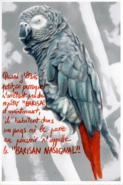 Clément Collet-Billon, Bariza Nasional, crayons de couleur et encres imprimantes sur papier, 21x14,7cm, 2013